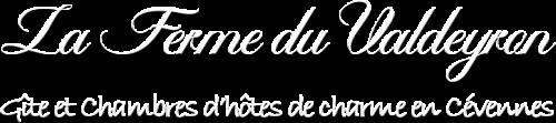Logo_Web_BIG_2